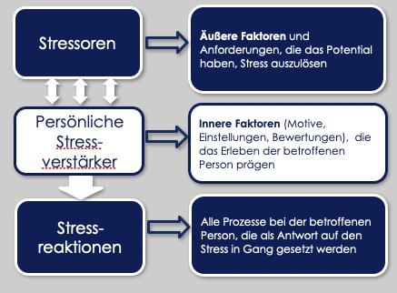 Interaktives Stressmanagement in Lüneburg