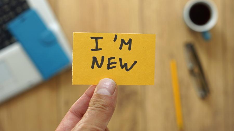 Neues einführen und Veränderung gestalten